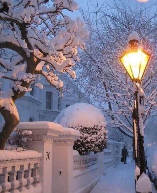 Snowy nights in my big backyard