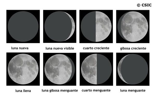 imagenes de las 8 fases lunares para colorear | LA CLASE DE MARIAN: LAS FASES DE LA LUNA