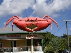 BIG Icons of Australia. Big Crab