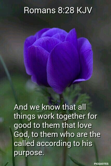 Romans 8:28 KJV - And we know that all things work together for good to them that love God, to them who are the called according to his purpose.