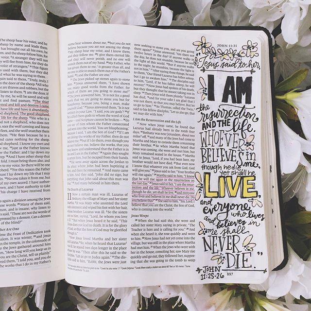 Steena's DBD: John 11:25-26