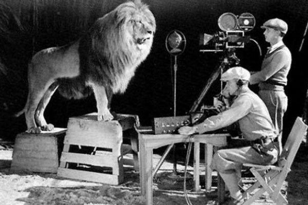 Momento de la filmación del león rugiente, insignia de la cadena MGM