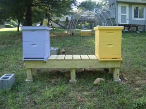 Beekeeping. See More. Hive Stand
