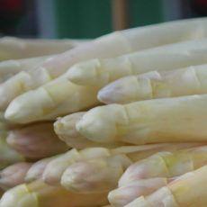 Mittagsbrei Rezepte: Der Mittagsbrei wird als erster Brei ab dem 5. Monat eingeführt. Er besteht aus Kartoffeln, Gemüse und Fleisch oder Getreideflocken.