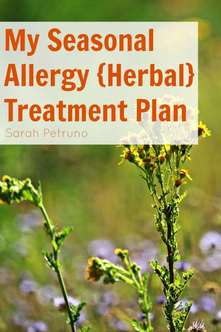 Natural healing remedies for seasonal allergies - herbs, resources, and…