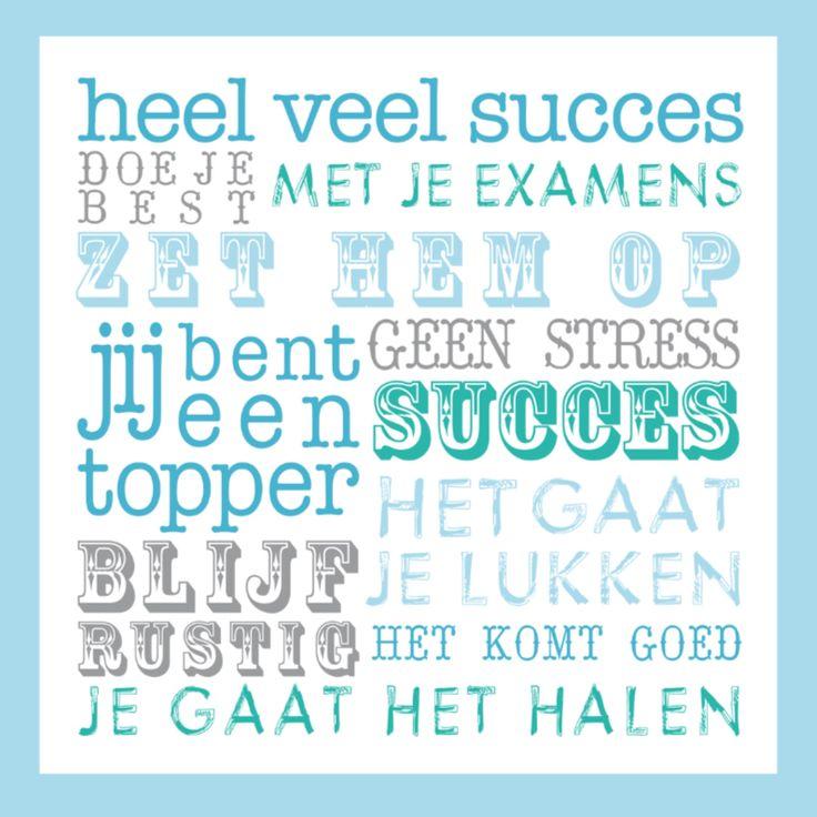 Citaten Voor Succes : Beste examen citaten op pinterest student