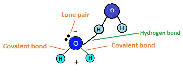 Confused about the difference between covalent bonds and polar covalent bonds? Check out our chemistry help section to figure it all out! #chemistry #homeworkhelp