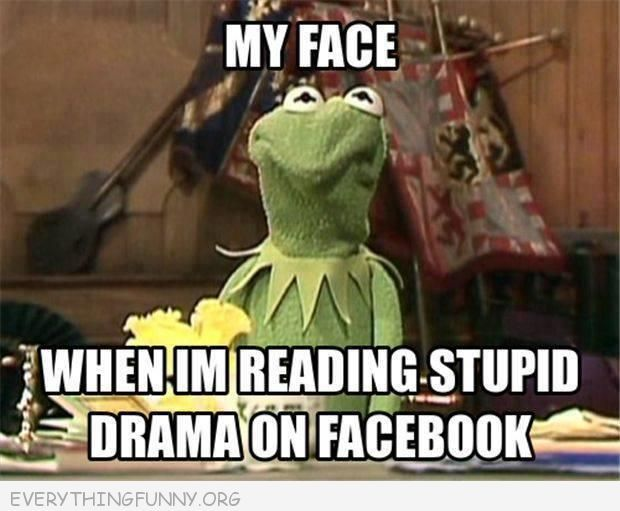 Funny Kermit The Frog: Funny Kermit Meme My Face When I'm Reading Stupid Drama On