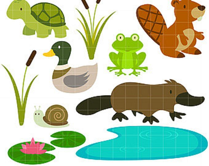 in the pond water creatures swamp life digital clip art for card making cupcake toppers paper crafts