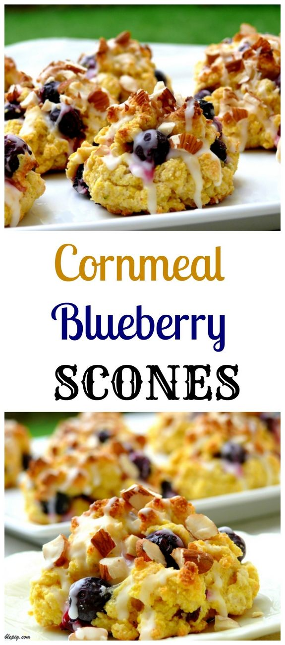 cornmeal blueberry scones cornmeal blueberry scones blueberry scones ...