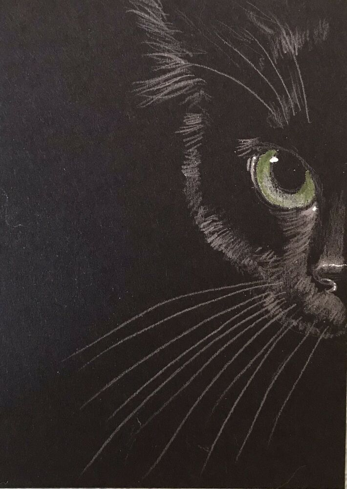 Aceo Orig Black Cat Long Whisker Tribe Cats Kittens Green Eyes Impressionist Black Cat Painting Cat Art Black Cat Drawing