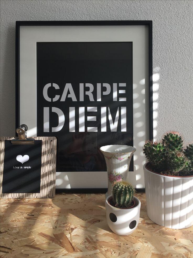 #thuis #carpediem #cactus