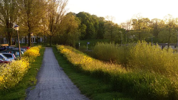 Walkingroute along the mill ..Nooit Volmaakt