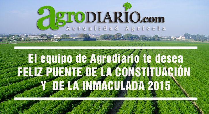 El equipo de www.agrodiario.com te desea feliz puente de la Constitución y de la Inmaculada y recueda  que ¡puedes ver nuestras noticias desde tu móvil y tablet !