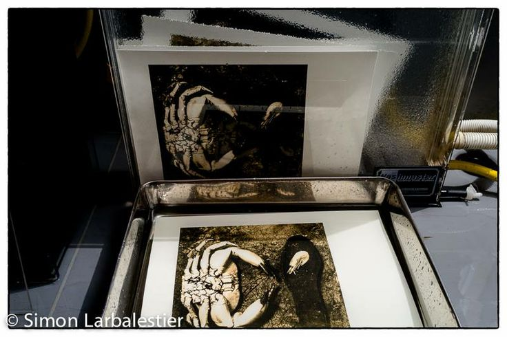 """""""Wave of Mutilation"""" limited edition lith prints in the archival washer and hypo clearing tray prior to selenium toning, West Yorkshire, UK. © Simon Larbalestier"""