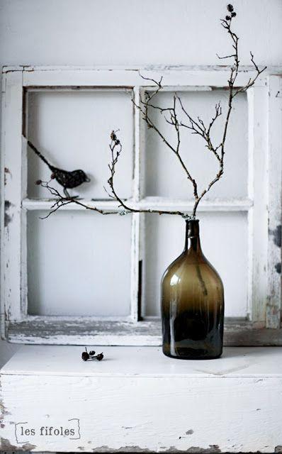Branche + oiseau