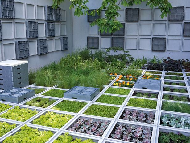 Pretty and Productive Gardens - I'm not normally one that likes regimented stuff but this appeals to me enormously...
