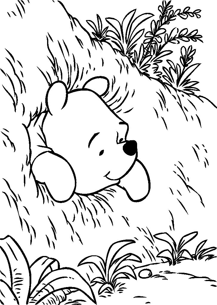 157 best Winnie the Pooh Coloring