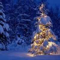 This Christmas by ron's songs© on SoundCloud