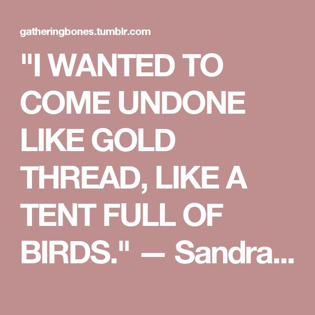 The House On Mango Street Quotes: 25+ Best Ideas About Sandra Cisneros On Pinterest