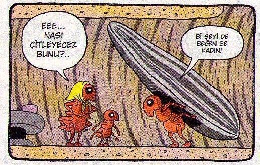 Çekirdek çitleyen karınca ailesi...  #komik #karikatür #karikatur #enkomikkarikatür #enkomikkarikatur #funny #comics