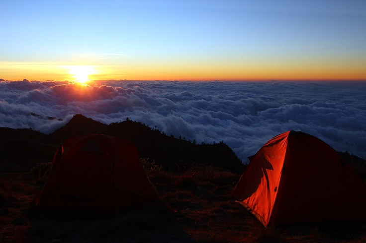Camping above the clouds on Mount Rinjani. Absolutely breathtaking. Lombok, Indonesia