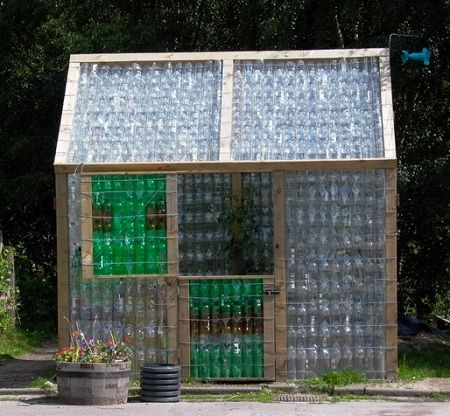 You can make a large or small plastic bottle greenhouse. Photo by John S. Ross.