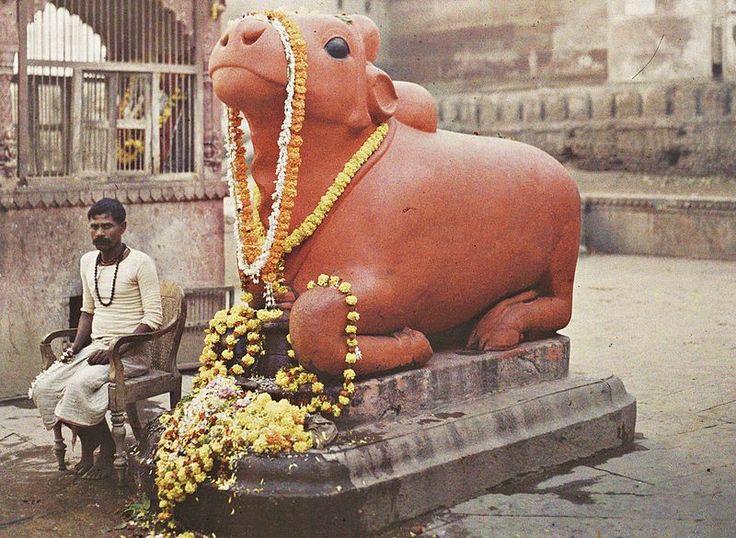 Statue of Nandi, Varanasi (Benares), India, 29 January 1914, Stéphane Passet, public domain via Wikimedia Commons.