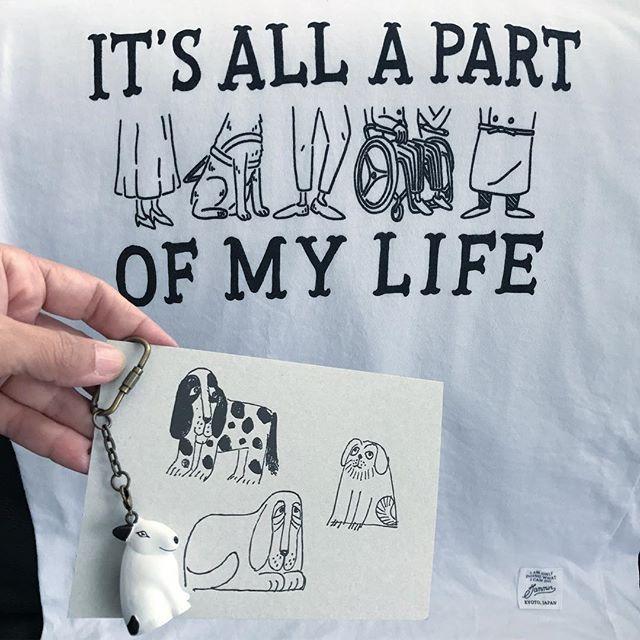 10月1日は『ほじょ犬の日』なのだそうです。  全国の身体障害者補助犬(盲導犬・介助犬・聴導犬)を応援します。    今日の12時〜13時にSNSで「#ほじょ犬の日」と発信することで、ほじょ犬を広く知ってもらう活動のお手伝いをすることができます。ハッシュタグ#ほじょ犬の日、を忘れずに!  以下ご参照を。  ↓↓↓ 補助犬たちは、障害のある方々にとって、「心強いパートナーであり、常にそばに居てくれるサポーター」。  あなたにとって、そんな「補助犬」のような存在は誰ですか?何ですか?人でも動物でも、モノでも何でもOK!日頃の感謝の気持ちをSNSで伝えてみませんか?    #ほじょ犬の日 #犬好き #lisalarson #helperdog