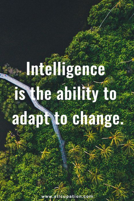 Quotes Of The Day: Intelligence Is The Ability To Adapt To Change