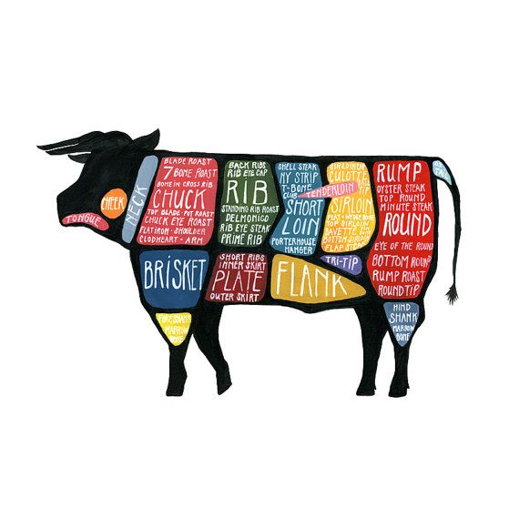 Detailed Cow Butcher Diagram  Use Every Part of the Cow by drywell, $25.00