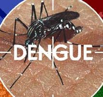 http://herbalcureindia.com/lifestyle/natural-remedy-for-dengue -How to deal with weakness and prevent dengue fever virus. Dengue spread by mosquito's causes sudden high fever and red rash on skin; juice of papaya leaves and citrus fruits boost immune system beneficial in dengue treatment.