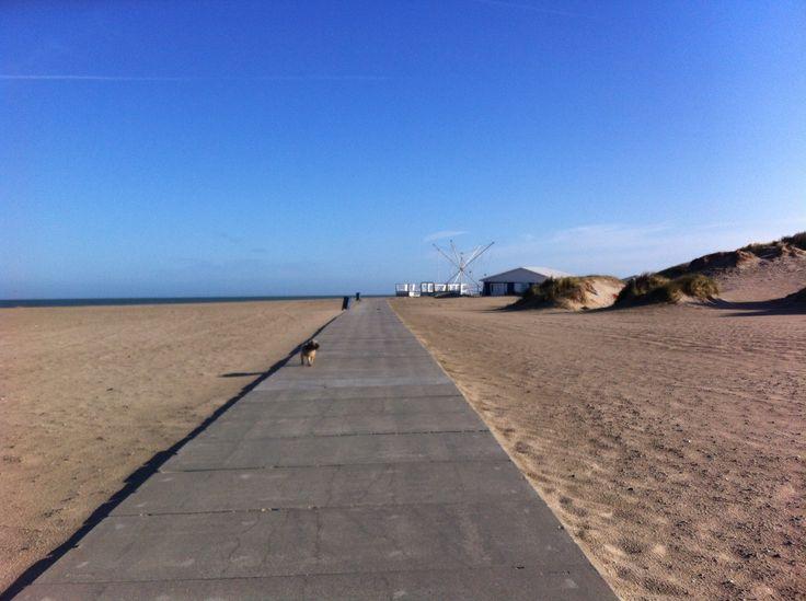 Hoek van Holland vanaf de pier , Rotterdamse strand