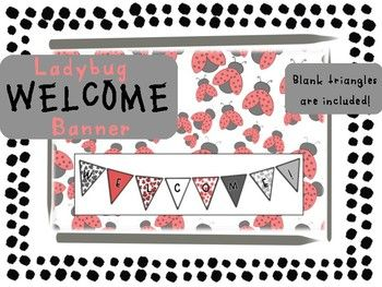 Perfect for your beginning of the year bulletin board or pictures! This matches perfectly with my ladybug calendar numbers and labels. Just what you need in a buggy classroom