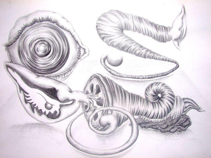 """Rumors"" - graphite on paper / creion grafic pe hârtie"