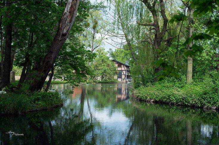 5 pomysłów na poznanie fotografii w fazie zmian wiosennych.
