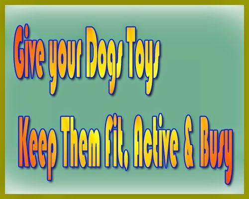 ICT World9: Dog Toys