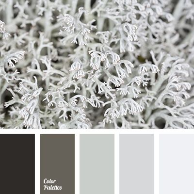 Free Collection Of Color Palettes Ideas For All The Occasions: Decorate  Your House, Flat, Bedroom, Kitchen, Living Room And Even Wedding With Our  Color ... Part 74