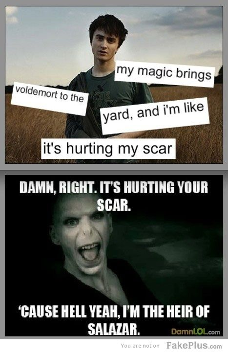 epic harry potter voldemort duet