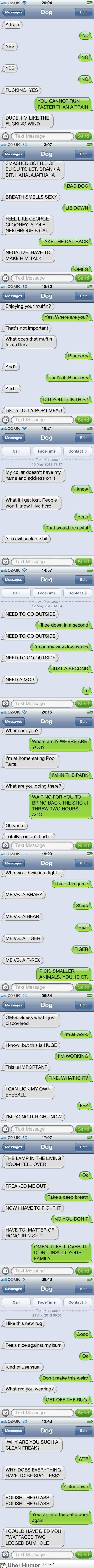 Hilarious texts from Dog.
