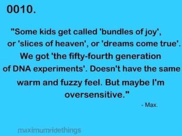 maximum ride the angel experiment book trailer