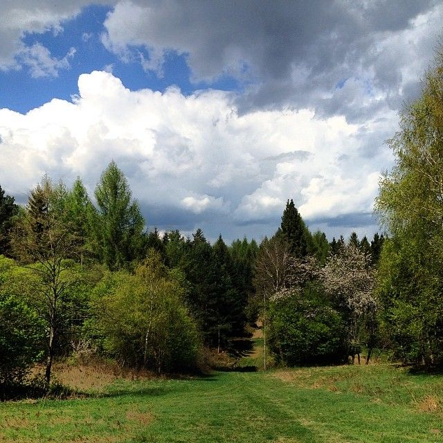 #wiosna #spring