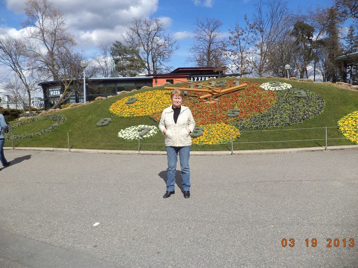 Reloj Floral Ginebra-Fotografía: Susana Beatriz Fister