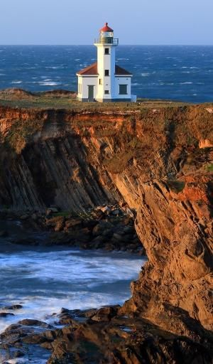 Cape Arago Lighthouse, Gregory Point, Charleston, Oregon by Divonsir Borges