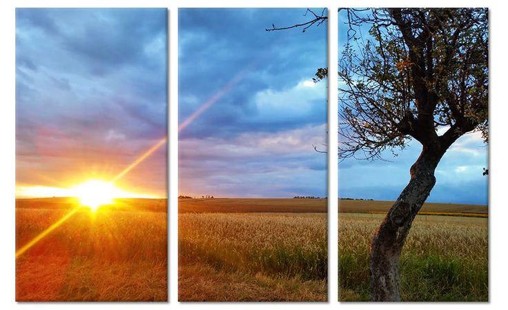 Canvas schilderij zomers landschap tijdens ondergaande zon