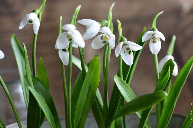 Купить Подснежники.Весна.Ботаническая скульптура из полимерной глины - белый, подснежники, весна, весенние цветы