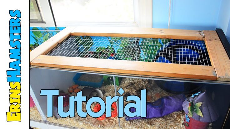 17 best images about gerbils on pinterest ikea billy for Hamster bin cage tutorial