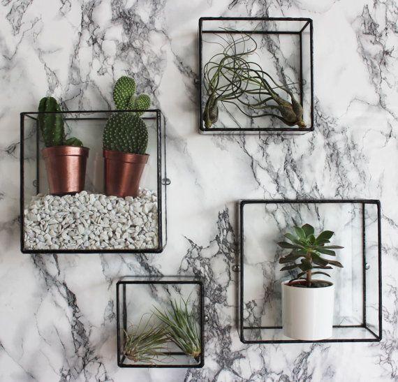 Pappus square box wall mount in 2019 trend blumen for Wandhalterung pflanzen