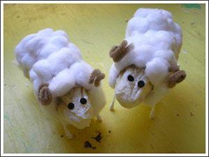 Moutons PQ
