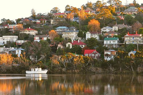 Beautiful suburban Launceston, viewed from the Tamar River - take a cruise to see it for yourself.